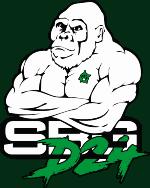 SBG Martial Arts